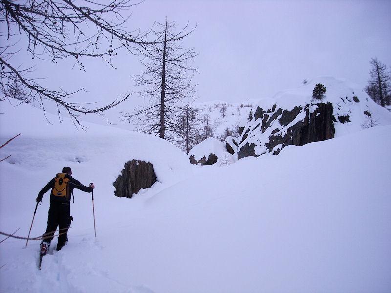 il boschetto sotto l'ultimo dosso per il colle...taaanta neve!