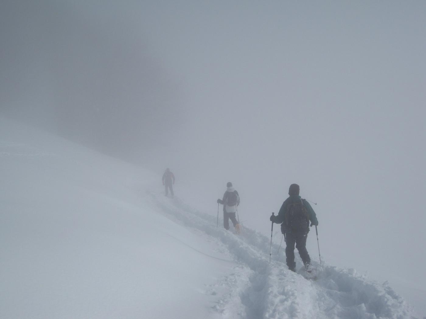 .......e noi scendiamo nella nebbia