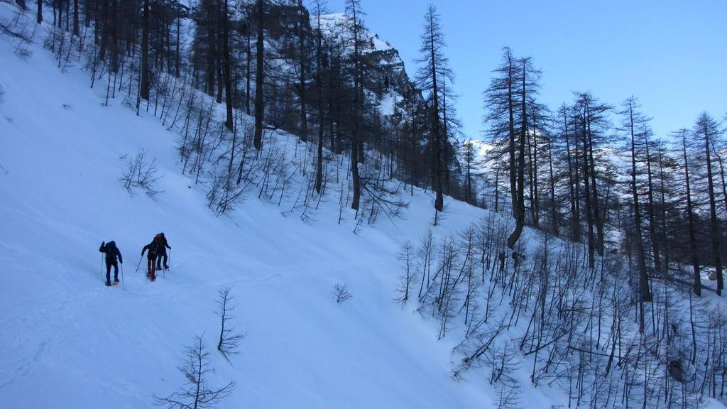 salendo nel bosco sopra il Refuge de Fontanalbe (31-1-2010)