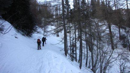 nella parte iniziale della stradina che sale nel Vallon de Fontanalbe (31-1-2010)