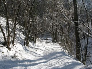 Neve sul percorso