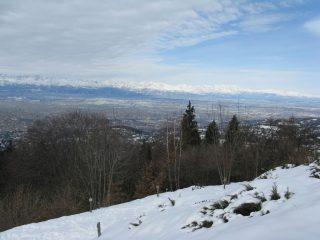 Torino dalla Collina