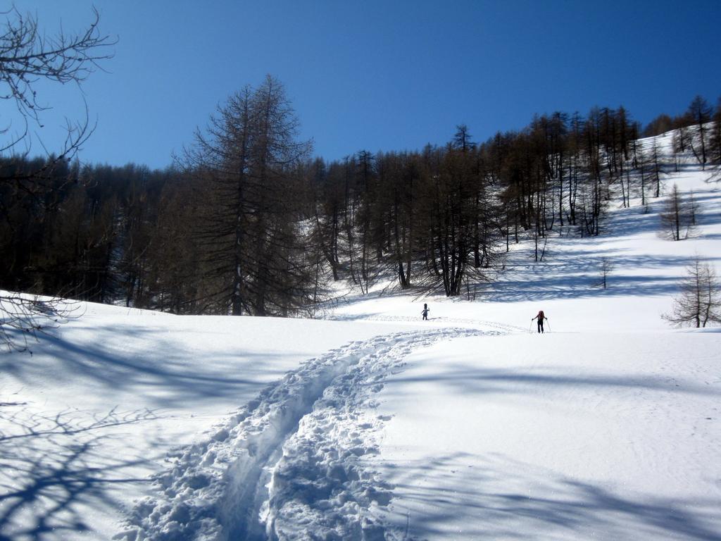 Chajol (Mont) dal Vallon de Caramagne 2010-02-13