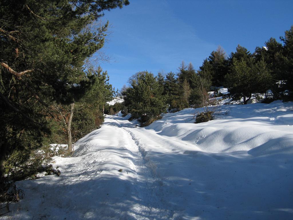 Il primo tratto di strada che sale al Colle del Colombardo