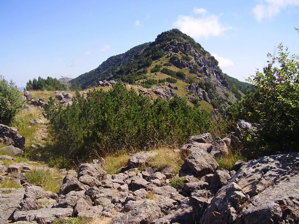 Il crinale che sale da Prato della Madonna, dietro il monte Bue