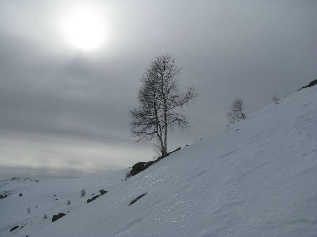 Il sole fà capolino fra le nebbie