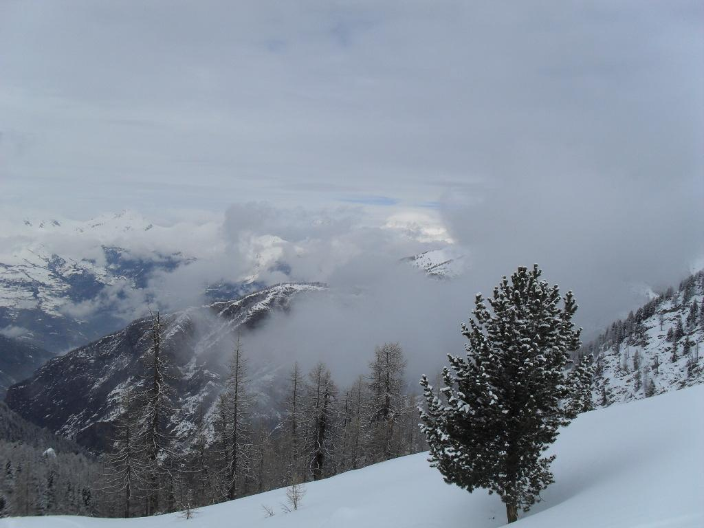 panorama dal colletto dell'Alpe