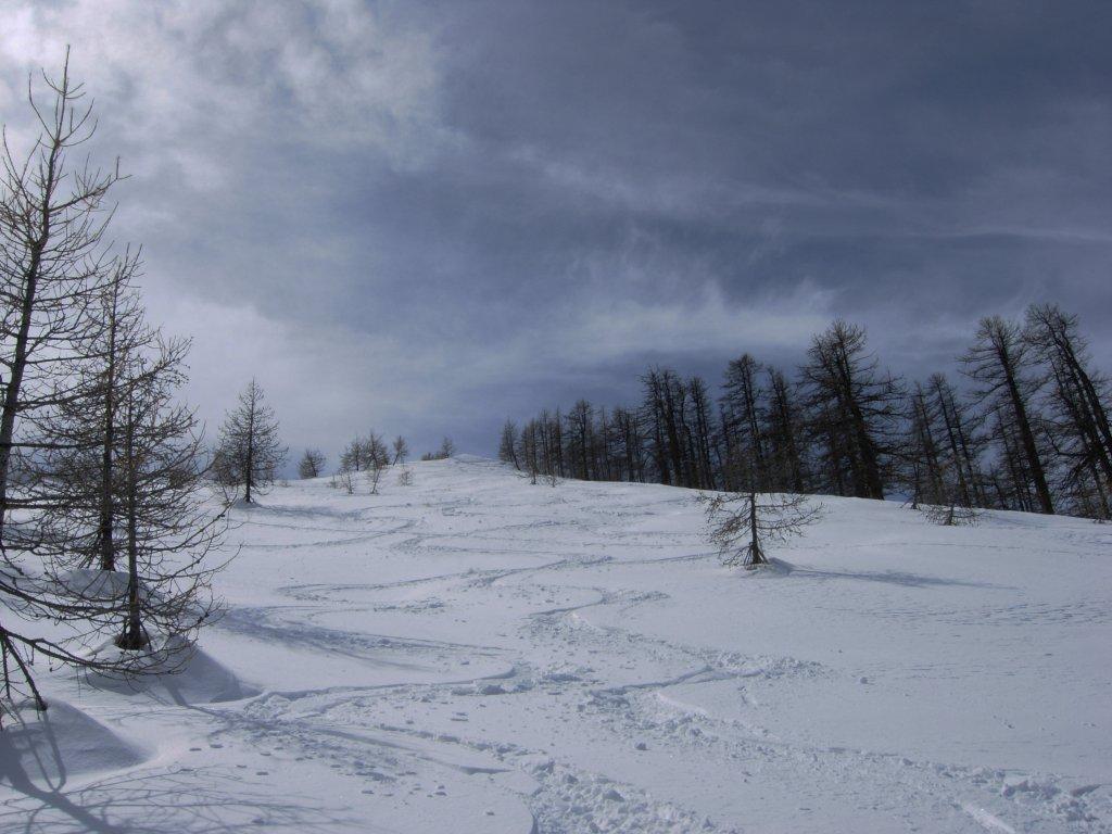 Alpet (Mont) da Saint Dalmas le Selvage via Mont Aunos 2010-03-28
