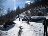 All'Alpe Cuccetta.