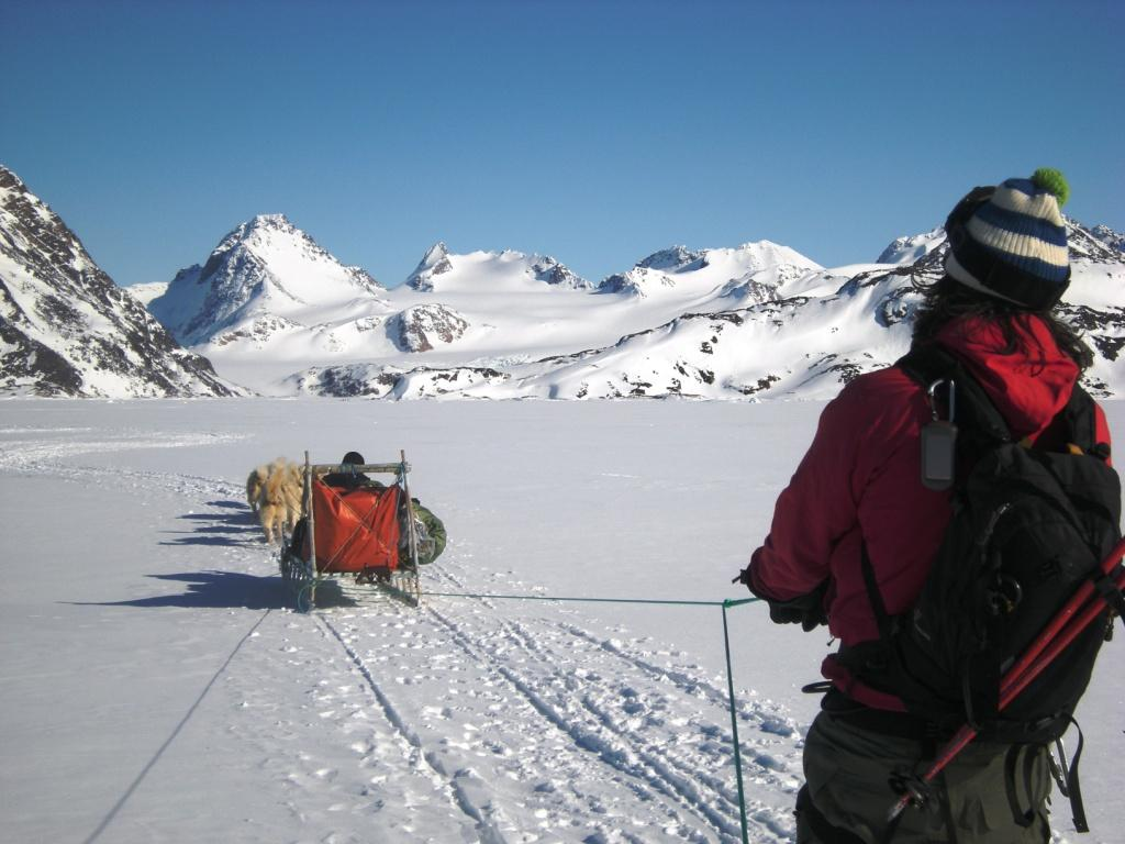 Groenlandia costa est 65° N Apusiajik Island, varie cime 2010-04-04