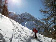 sfondo monte Furgon