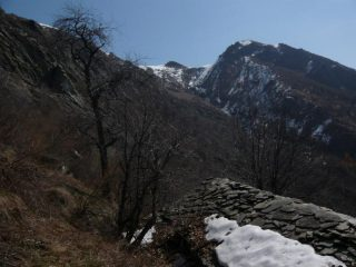 punta busiera dall'alpe forcetta