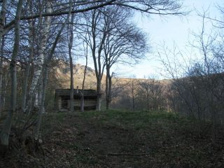 Percorrendo la dorsale nel bosco presso la baita