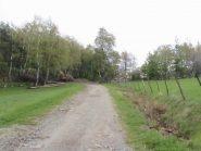 Larrivo all'area pic nic di Prese Rossi