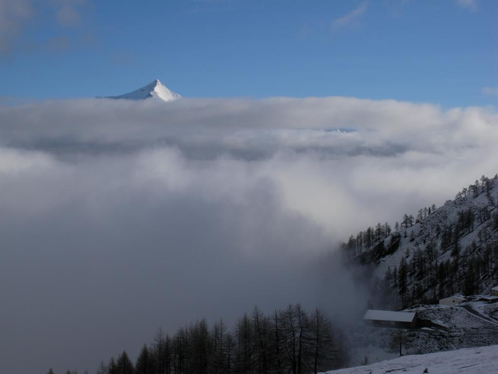 Il rocciamelone e merge dalle nebbie...