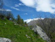 Panorama scendendo a Chiapetto
