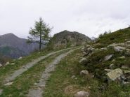 Colle Porti Neu