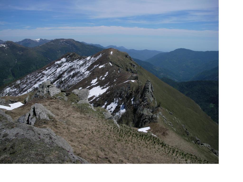 Il Monte Lapare'