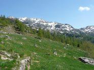 Parte della cesta percorsa da alpe Vallessa