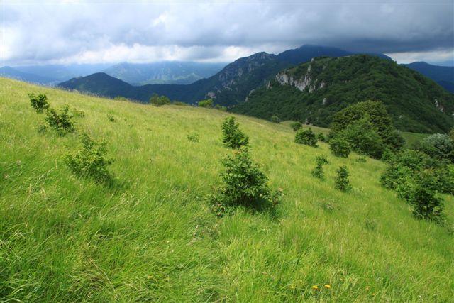 I prati prima del colle e il Monte Alpe Ovest