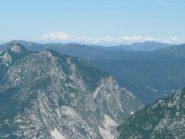 Rosa e Alpi Svizzere dal Pizzo