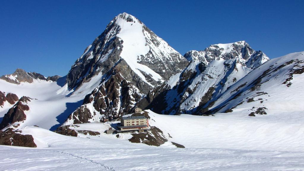 Gran Zebrù (al centro), Ortles (a destra) e Rifugio Casati osservati dalla Vedretta del Cevedale (25-6-2010)