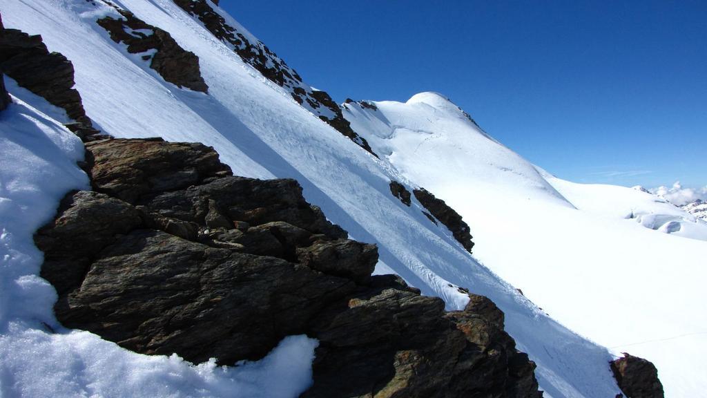 dalla cresta NE della Zufall Spitze...vista verso il Cevedale (25-6-2010)