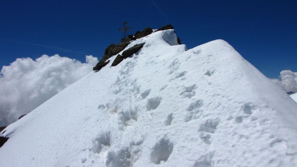 ultimi metri di cresta prima della cima della Zufall Spitze (25-6-2010)