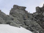 piccoli camosci sopra le rocce del colle