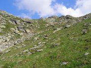 Il pendio erboso a monte dell'Alpe Mandetta