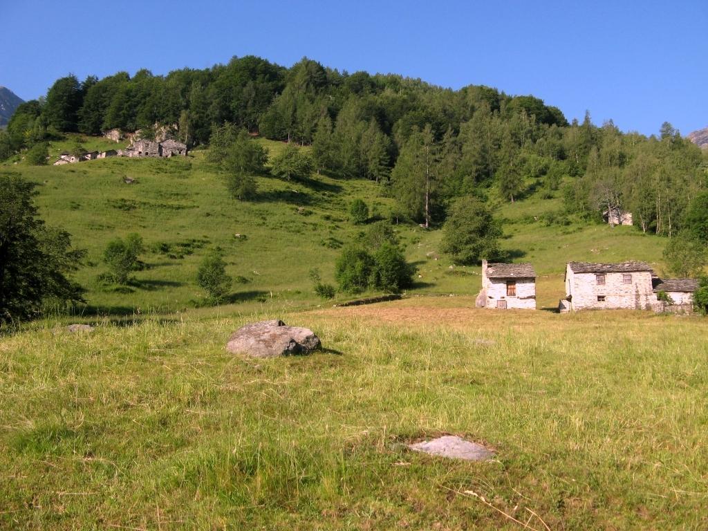 I prati dell'Alpeggio Tiracui.