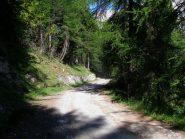 la strada per Sagnalonga