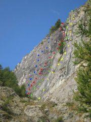 da sinistra (blu) Phenomena, (rosso) balla, (verde) cuculo), (giallo) aquile