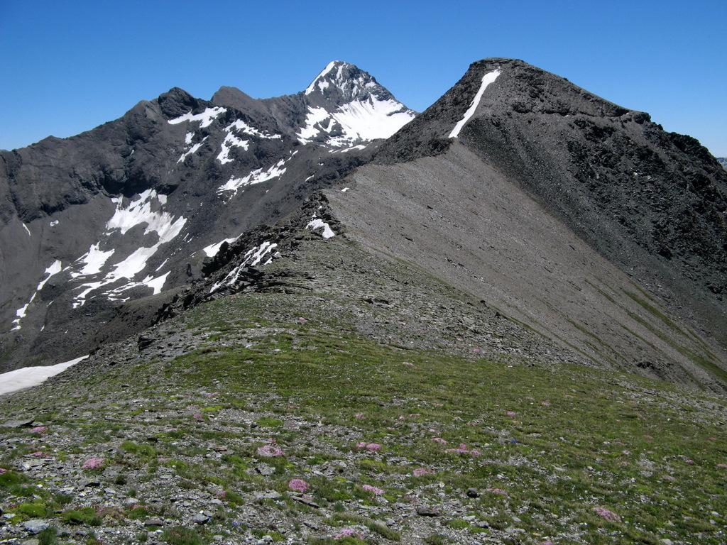 La cresta che conduce alla Punta Gianni Vert