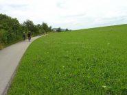 Verdi colline