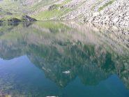il mon viso riflesso nel lago fiorenzo