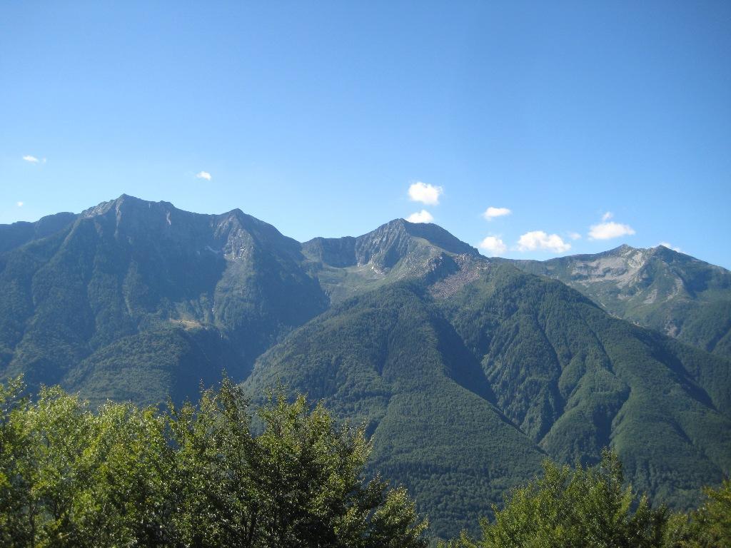 Ragno-Nona-Togano e Tignolino
