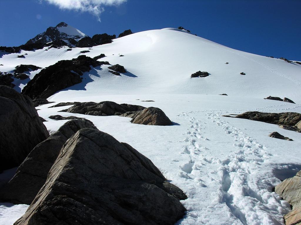 il Petit Mont Blanc m. 3424 visto dal Bivacco Rainetto (7-7-2007)