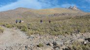 salendo sui facili pendii erbosi lungo la stradina sterrata (12-8-2010)
