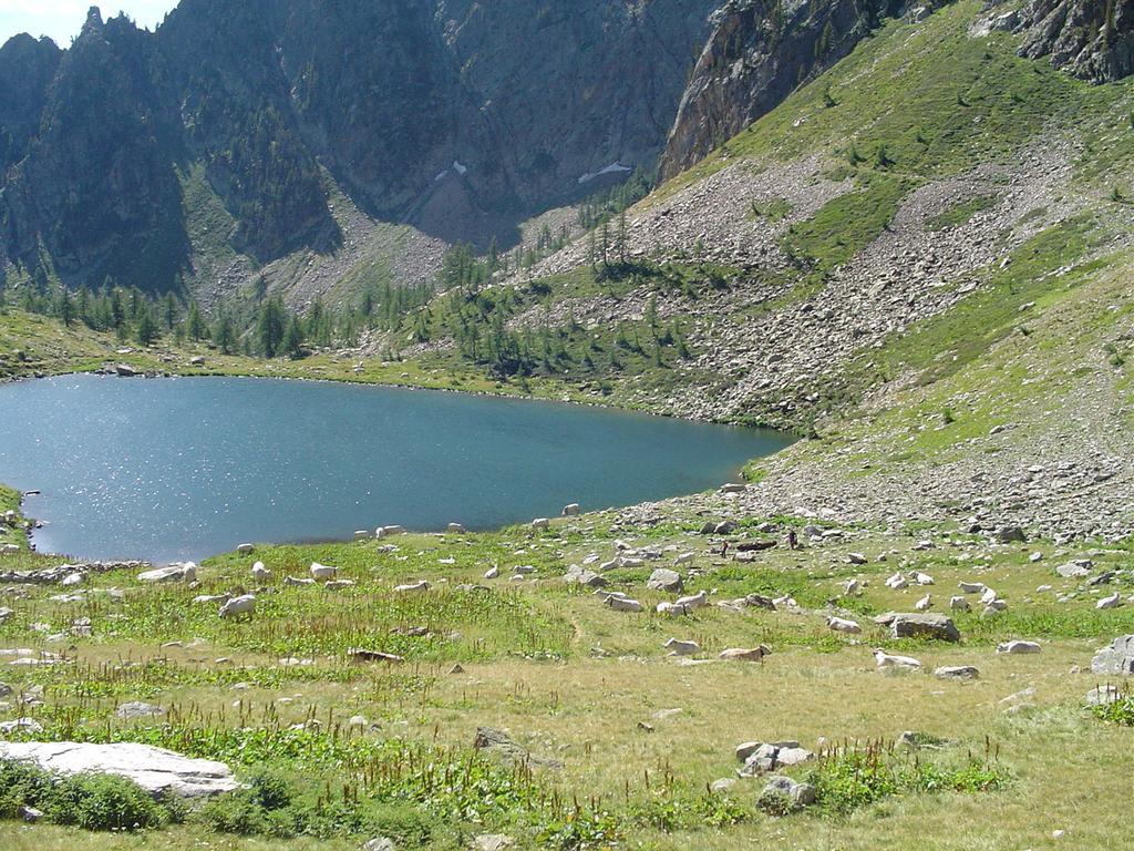 lago aver inferiore