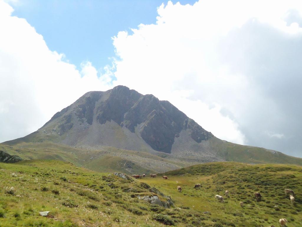 Quaternà Anello da Passo Monte Croce Comelico 2010-08-19