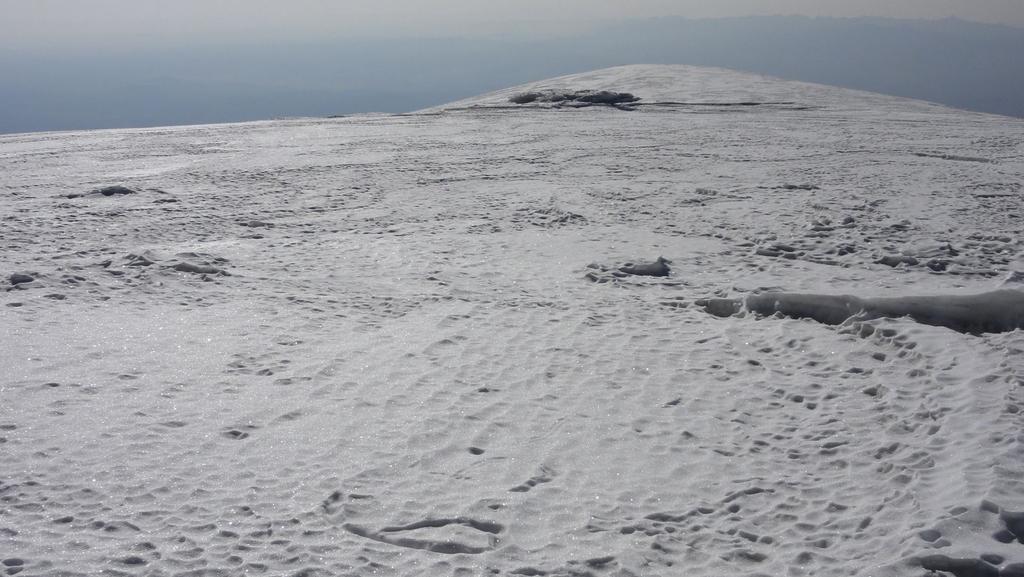 una parte del grande calottone glaciale della cima (21-8-2010)