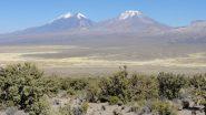 Nevado Parinacota m. 6432 (a sinistra) e Pomerape m. 6222 (a destra) da Pueblo Sajama