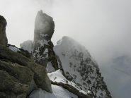 L'onda nevosa e l'Androsace