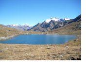 Il Gran Zebru' e il Tresero dal Passo Gavia
