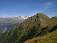 Il Monte Palino visto dalle pendici del Monte Foppa