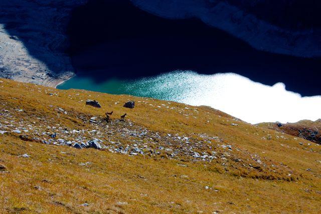 caduta libera verso il lago