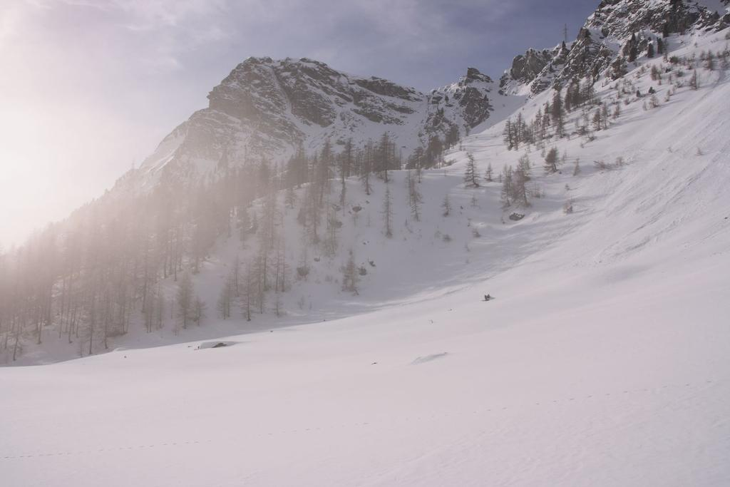 anticima del Monte Zerbion vista dal bosco sopra Barmasc (17-2-2007)