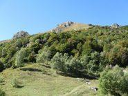 Monte Due Mani visto dalla Bocchetta di Desio