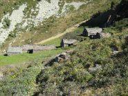 Alpe Menta